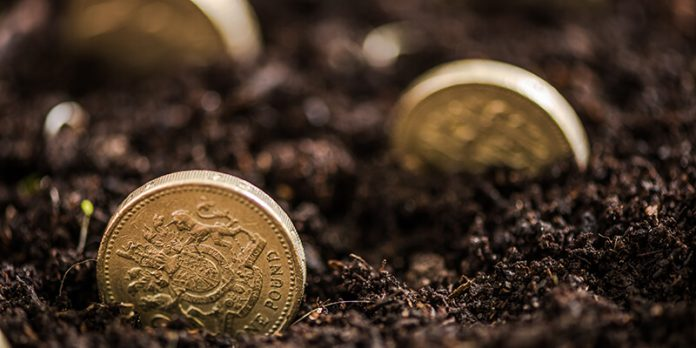 UK pounds growing in soil