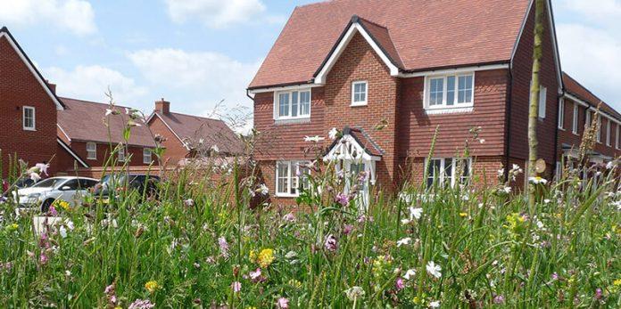 Biodiversity Foundation Report - housebuilding