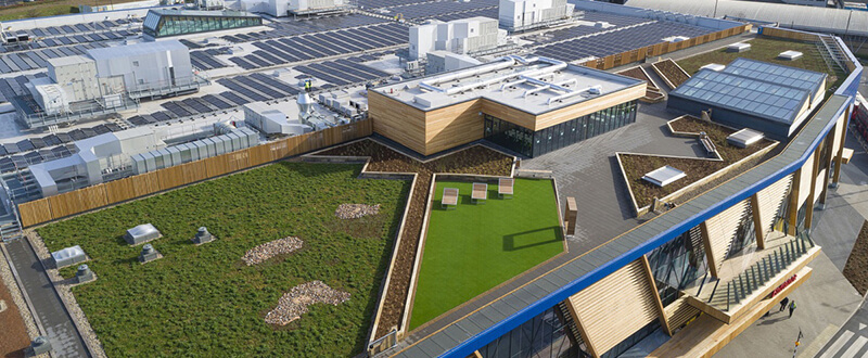 EveRoof green roof