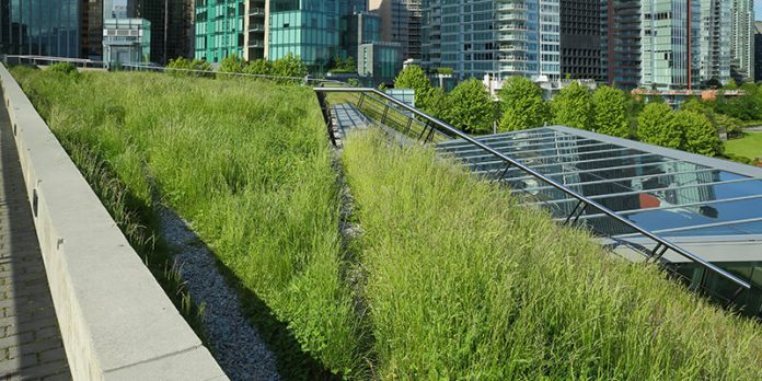 Green rooftop terrace