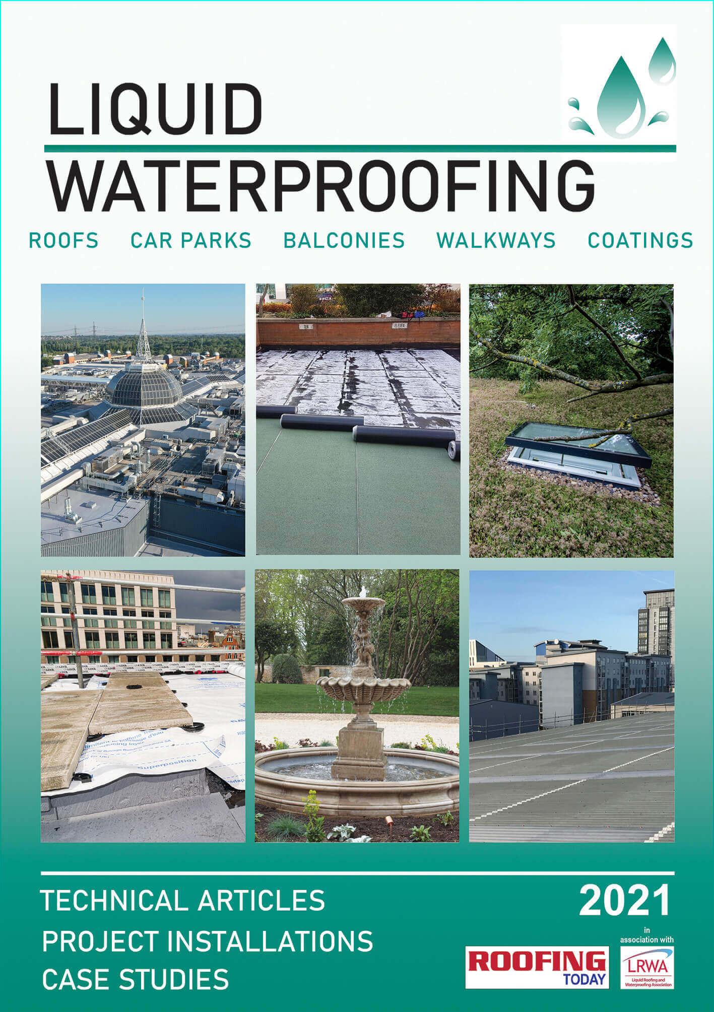 Cover image of 2021 Liquid Waterproofing Supplement