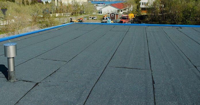 flat roof survey